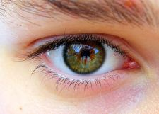 Oko (Foto: Flickr)