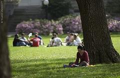 Učenje na svježem zraku (Foto: Flickr)