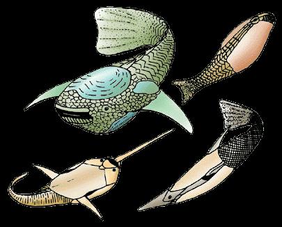 Ostracodermi – izumrle besčeljusne ribe (Izvor: Philippe Janvier / Creative commons)