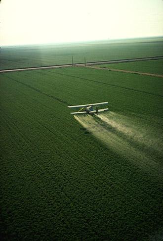 Avion prska usjeve pesticidima (foto: Wikipedia)