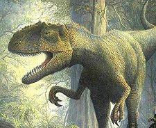 Allosaurus (Gerhard Boeggemann)