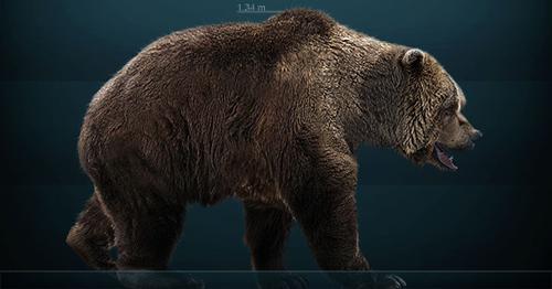 Rekonstrukcija špiljskog medvjeda (foto: Wikipedia)