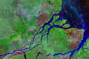 Amazona iz svemira (foto: NASA)