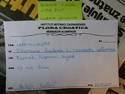 Etiketa s podacima o biljci (foto: Behija Salkić)
