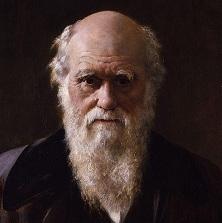 Charles Darwin 1881 (Izvor: Wikimedia Commons)