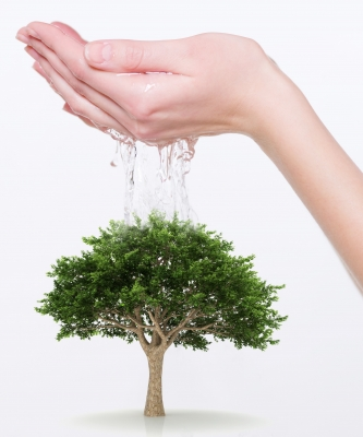 Briga o okolišu (foto: FreeDigitalPhotos)