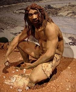 Homo heidelbergensis (Izvor: Wikimedia Commons)