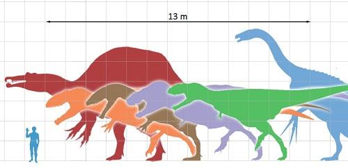 Usporedba veličine čovjeka i nekoliko vrsta dinosaura (Izvor: Wikimedia Commons)