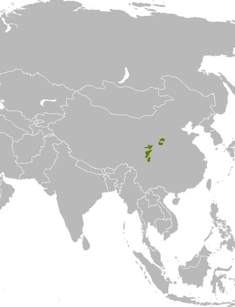 Rasprostranjenost velikih pandi (Izvor: Wikimedia commons)