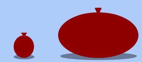 **Mali i veliki balon (Izvor: evolution.berkeley.edu)